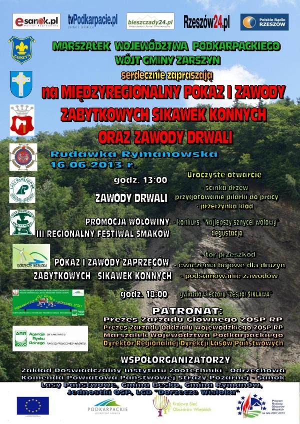 Plakat Sikawki 2013