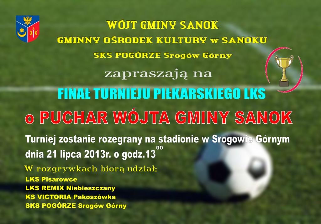 Afisz-Puchar Wójta 2013