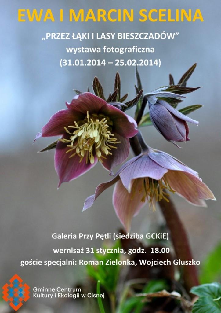 Plakat - wernisaz Scelina