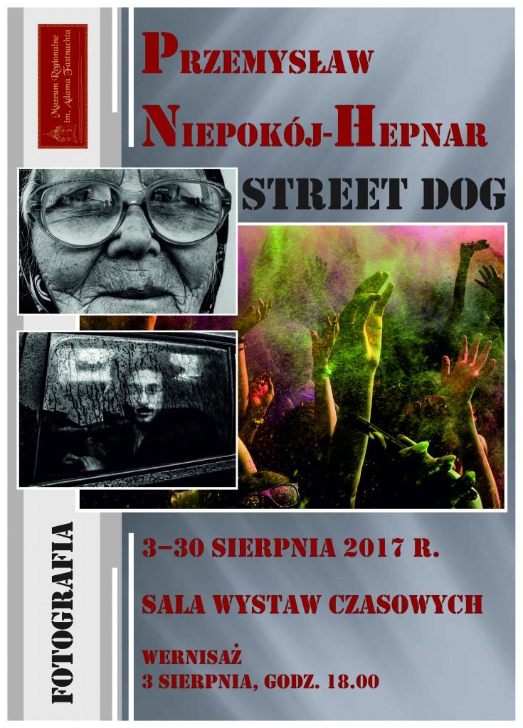 plakat Przemysław Niepokój-Hepnar